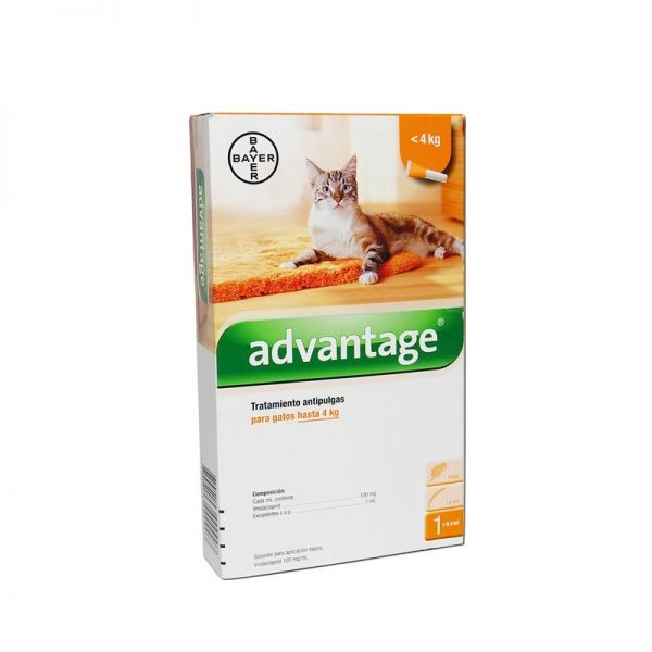 advantage_gatos